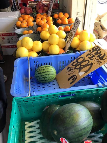 カゴに入ったオレンジ、グレープフルーツ、スイカ