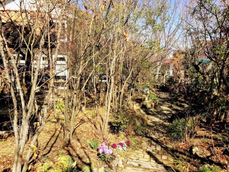 けやきの杜の庭園写真