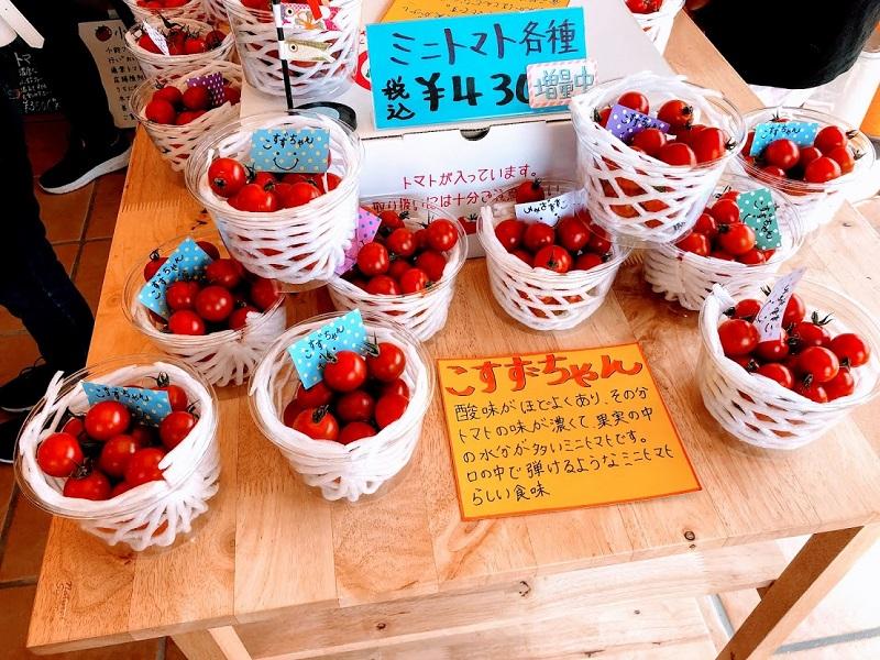 いろいろな種類のミニトマトが並んだ写真