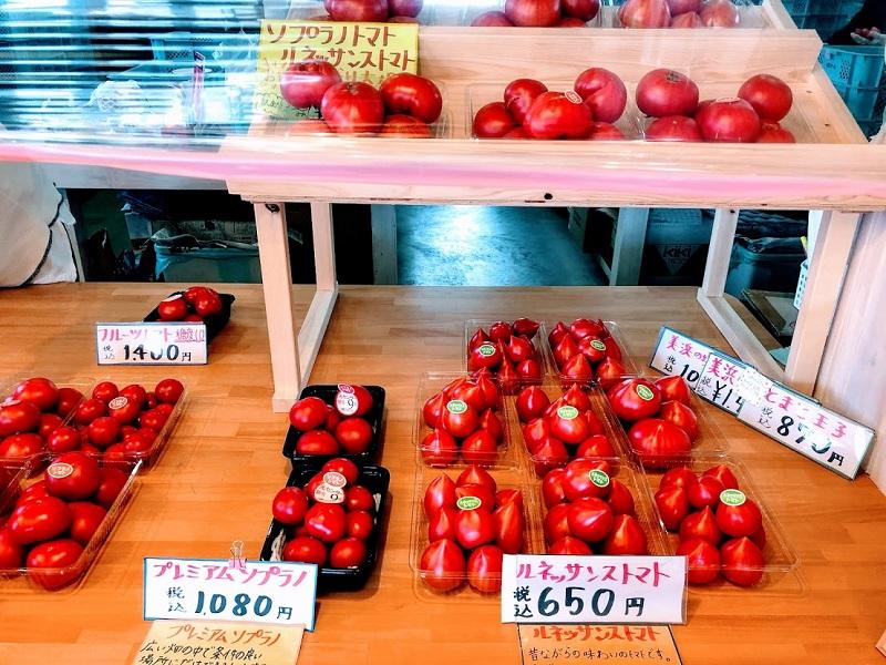 いろいろな種類のトマトが並んでいる写真
